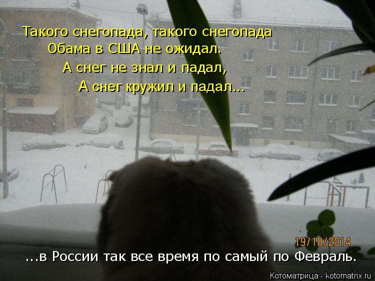 Котоматрица: Такого снегопада, такого снегопада Обама в США не ожидал. А снег не знал и падал, А снег кружил и падал... ...в России так все время по самый по Ф