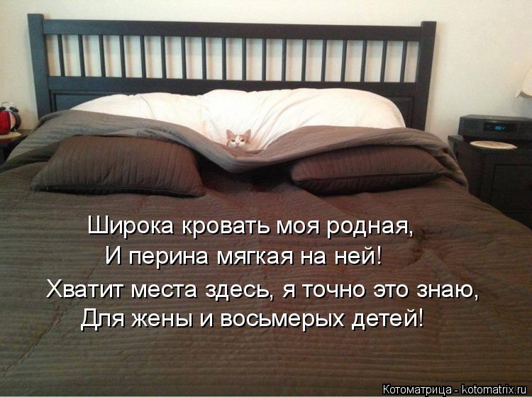 Котоматрица: Широка кровать моя родная, И перина мягкая на ней! Хватит места здесь, я точно это знаю, Для жены и восьмерых детей!