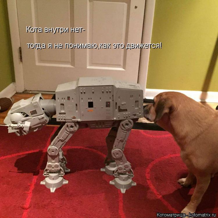 Котоматрица: Кота внутри нет- тогда я не понимаю,как это движется!