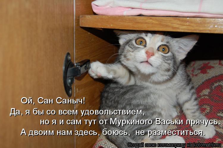Котоматрица: Да, я бы со всем удовольствием, но я и сам тут от Муркиного Васьки прячусь. А двоим нам здесь, боюсь,  не разместиться. Ой, Сан Саныч!