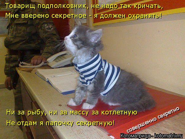 Котоматрица: совершенно секретно Товарищ подполковник, не надо так кричать,  Мне вверено секретное - я должен охранять!  Ни за рыбу, ни за массу за котлетн