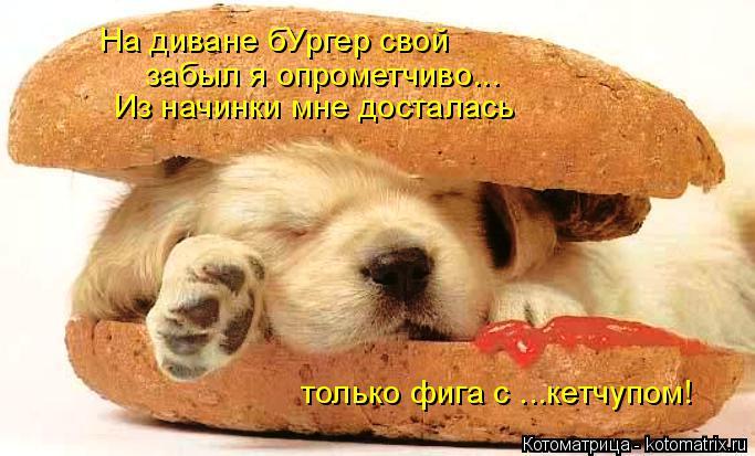 Котоматрица: На диване бУргер свой Из начинки мне досталась  забыл я опрометчиво... только фига с ...кетчупом!