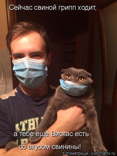 Котоматрица: Cейчас свиной грипп ходит, а тебе ещё Вискас есть  со вкусом свинины!