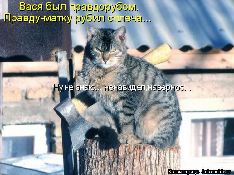 Котоматрица: Вася был правдорубом. Правду-матку рубил сплеча... Ну,не знаю... ненавидел,наверное...