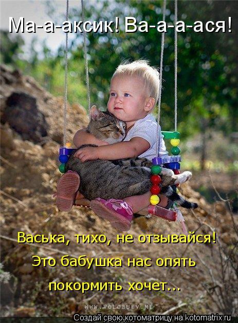 Котоматрица: Васька, тихо, не отзывайся! Это бабушка нас опять покормить хочет... Ма-а-аксик! Ва-а-а-ася!