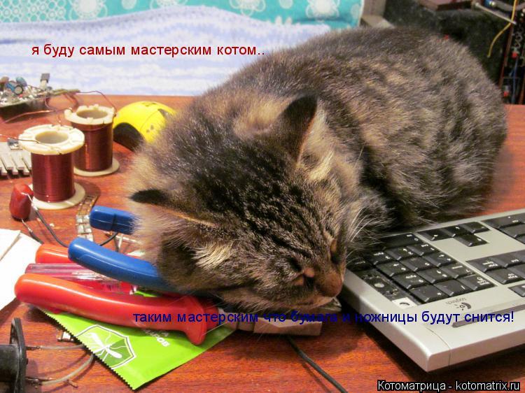 Котоматрица: я буду самым мастерским котом.. таким мастерским что бумага и ножницы будут снится!