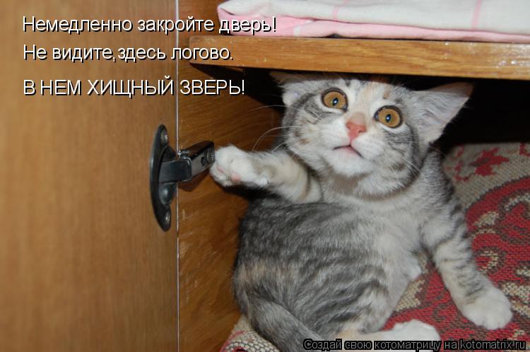 Котоматрица: Немедленно закройте дверь! Не видите,здесь логово. В НЕМ ХИЩНЫЙ ЗВЕРЬ!