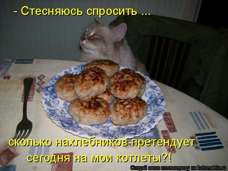 Котоматрица: - Стесняюсь спросить ... сколько нахлебников претендует сегодня на мои котлеты?!