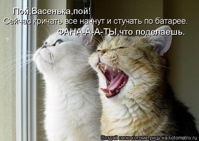 Котоматрица: Пой,Васенька,пой! Сейчас кричать все начнут и стучать по батарее. ФАНА-А-А-ТЫ,что поделаешь.