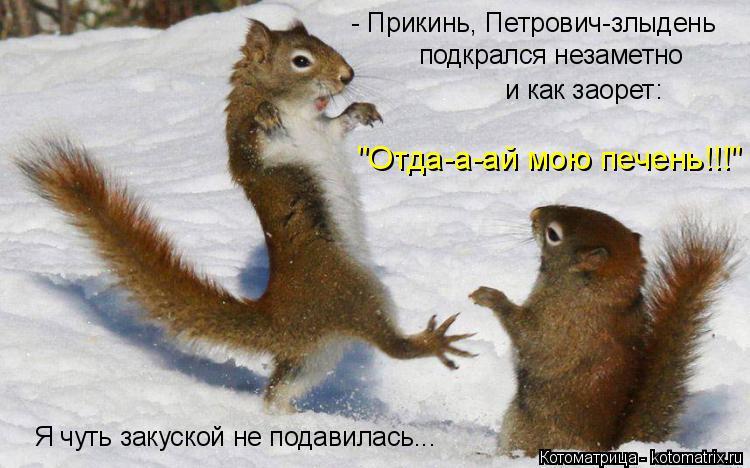 """Котоматрица: - Прикинь, Петрович-злыдень подкрался незаметно и как заорет: """"Отда-а-ай мою печень!!!"""" Я чуть закуской не подавилась..."""