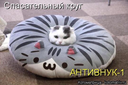 Котоматрица: Спасательный круг АНТИВНУК-1
