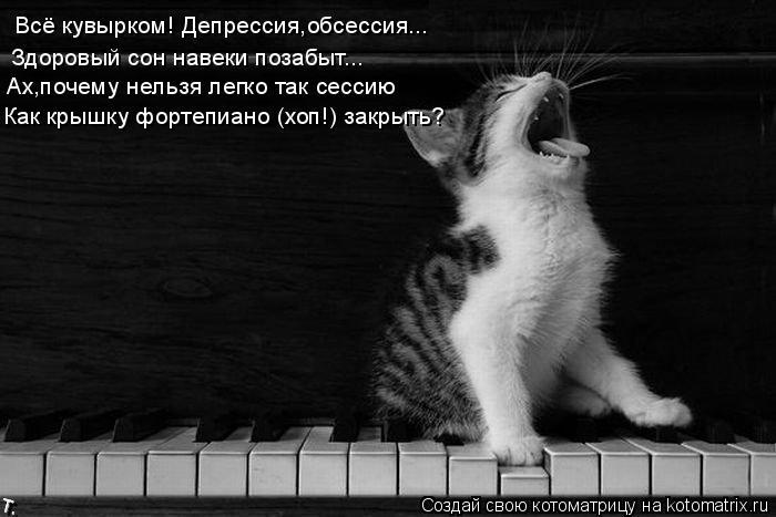 Котоматрица: Всё кувырком! Депрессия,обсессия... Здоровый сон навеки позабыт... Ах,почему нельзя легко так сессию Как крышку фортепиано (хоп!) закрыть?