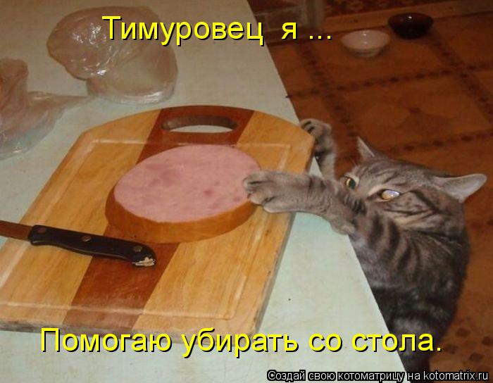 Котоматрица: Тимуровец  я ... Помогаю убирать со стола.