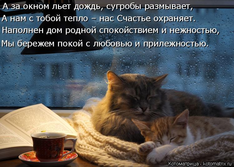 Котоматрица: А за окном льет дождь, сугробы размывает, А нам с тобой тепло – нас Счастье охраняет. Наполнен дом родной спокойствием и нежностью, Мы береж