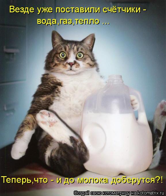 Котоматрица: Везде уже поставили счётчики - вода,газ,тепло ... Теперь,что - и до молока доберутся?!