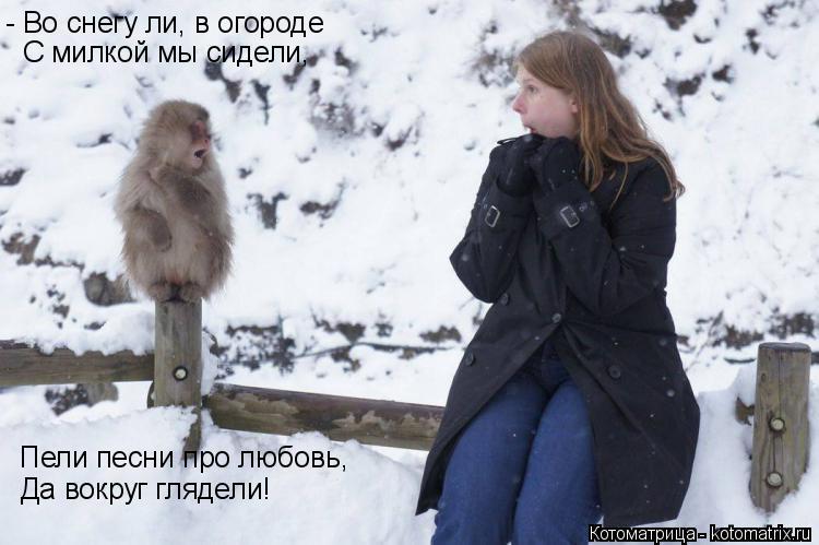 Котоматрица: - Во снегу ли, в огороде  С милкой мы сидели, Пели песни про любовь, Да вокруг глядели!