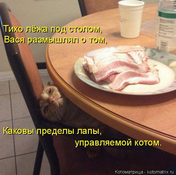 Котоматрица: Тихо лёжа под столом, Вася размышлял о том, Каковы пределы лапы,  управляемой котом.