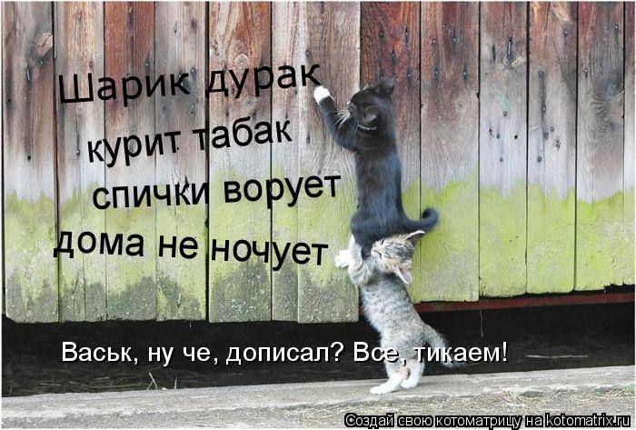 Котоматрица: Шарик дурак курит табак спички ворует дома не ночует Васьк, ну че, дописал? Все, тикаем!