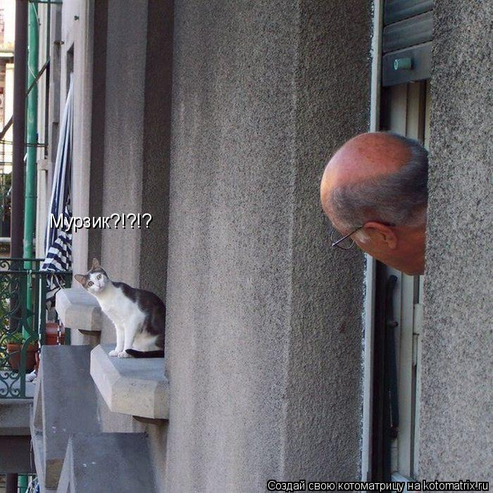 Котоматрица: Мурзик?!?!?