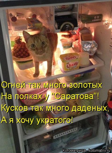 """Котоматрица: Огней так много золотых  На полках у """"Саратова""""! Кусков так много даденых,  Кусков так много даденых,  А я хочу укратого!"""