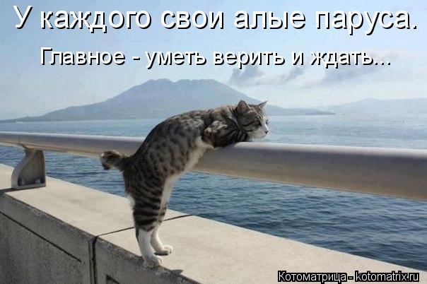 Котоматрица: У каждого свои алые паруса. Главное - уметь верить и ждать...