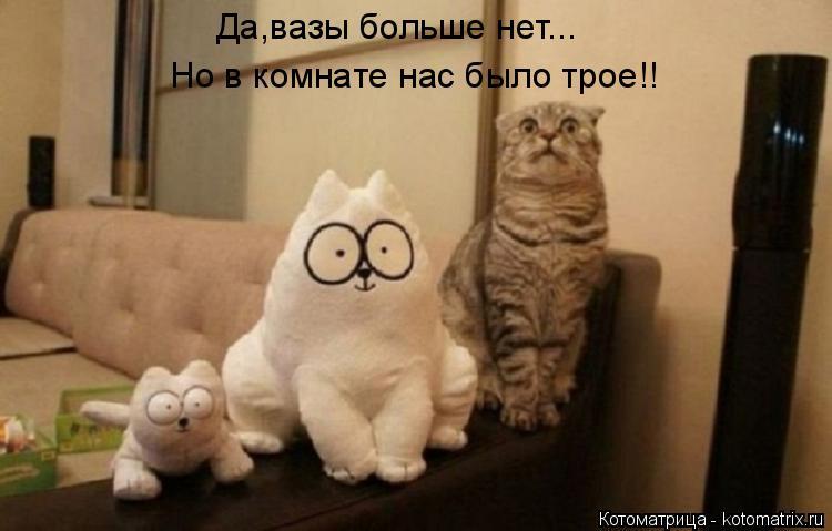 Котоматрица: Да,вазы больше нет... Но в комнате нас было трое!!