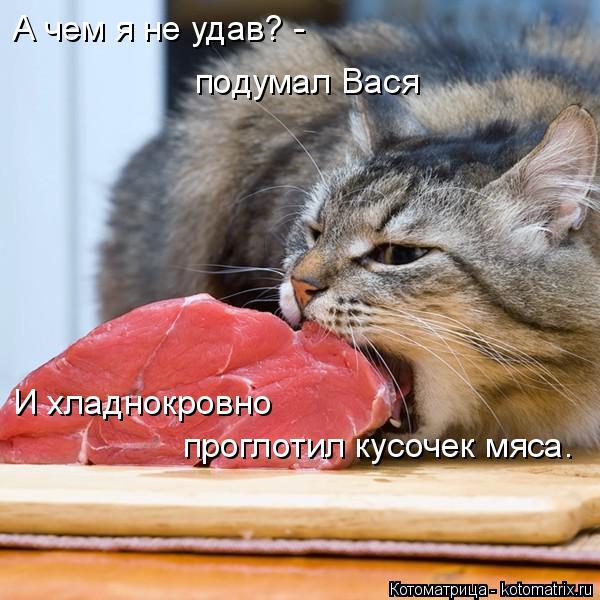 Котоматрица: А чем я не удав? - подумал Вася И хладнокровно  проглотил кусочек мяса.