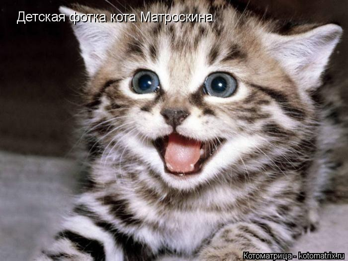 Котоматрица: Детская фотка кота Матроскина