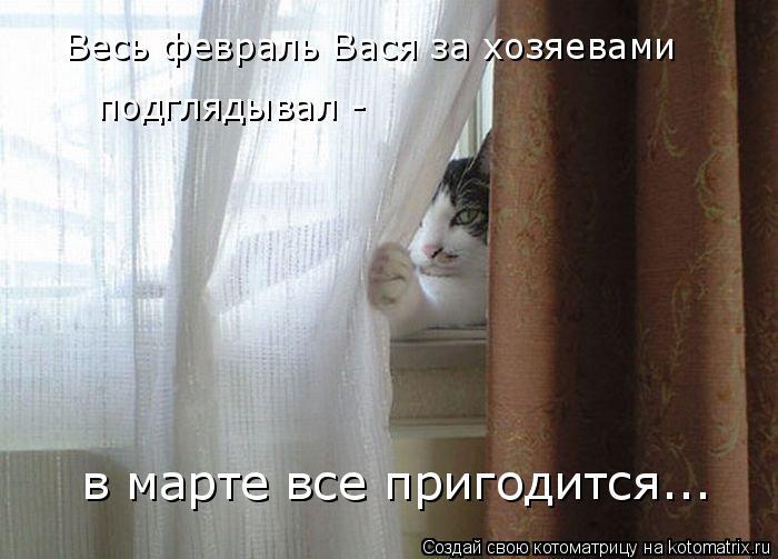 Котоматрица: Весь февраль Вася за хозяевами  подглядывал -  в марте все пригодится...