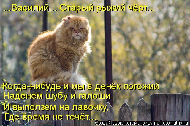 Котоматрица: Когда-нибудь и мы в денёк погожий Наденем шубу и галоши И выползем на лавочку,  Где время не течёт... ...Василий... Старый рыжий чёрт...