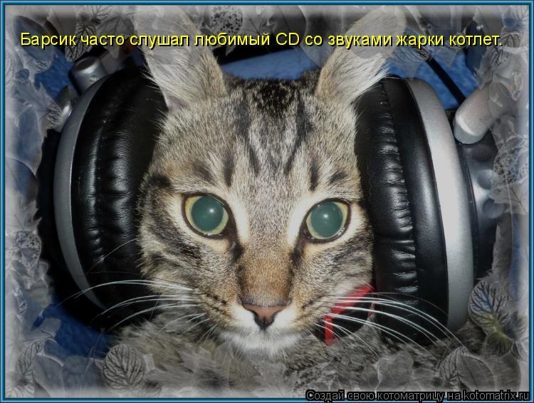 Котоматрица: Барсик часто слушал любимый CD со звуками жарки котлет.