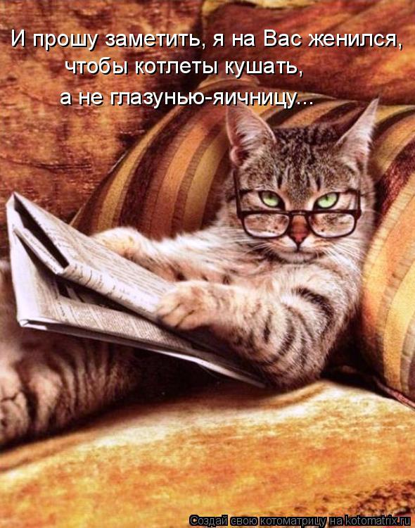 Котоматрица: И прошу заметить, я на Вас женился, чтобы котлеты кушать, а не глазунью-яичницу...