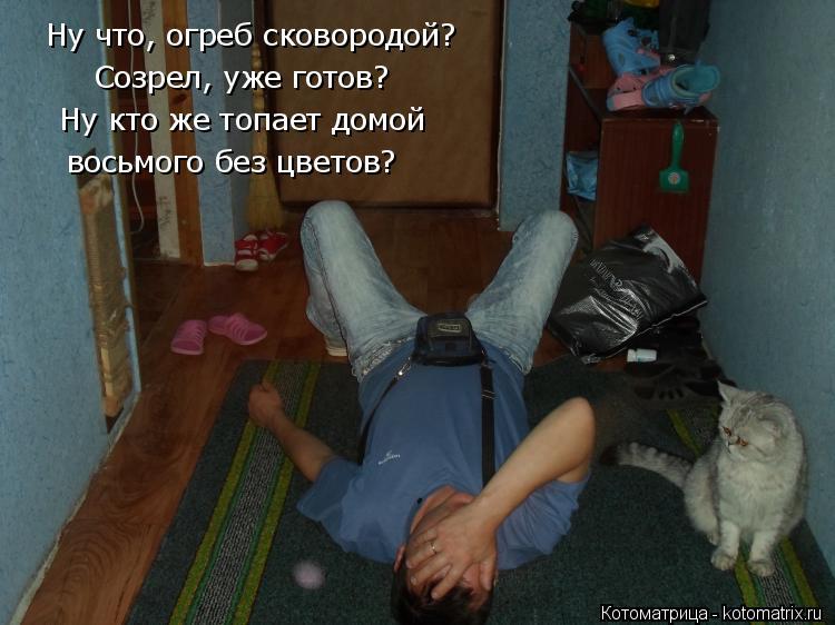 Котоматрица: Ну что, огреб сковородой? Созрел, уже готов? Ну кто же топает домой восьмого без цветов?