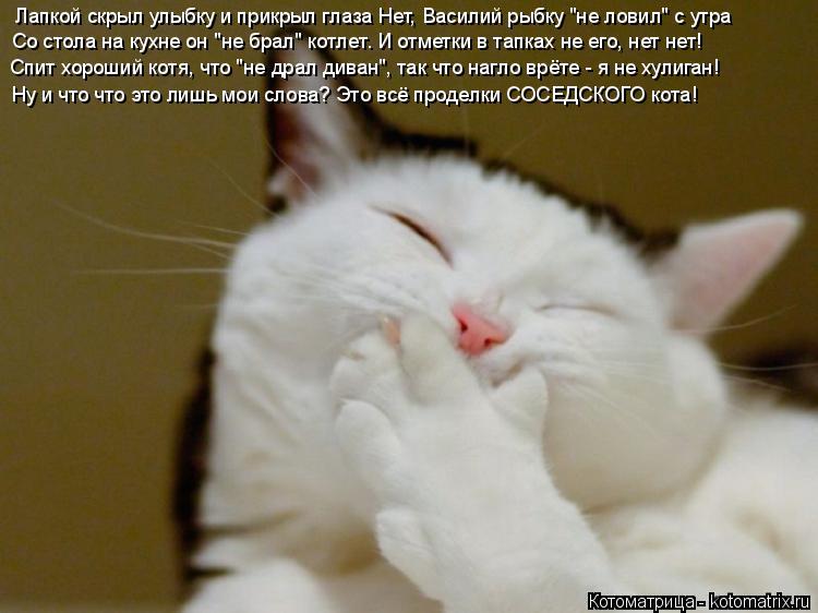 """Котоматрица: Лапкой скрыл улыбку и прикрыл глаза Нет, Василий рыбку """"не ловил"""" с утра Со стола на кухне он """"не брал"""" котлет. И отметки в тапках не его, нет не"""