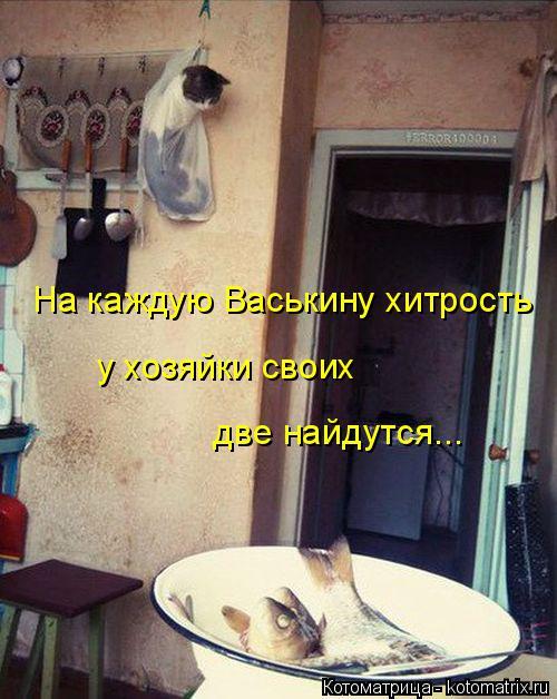 Котоматрица: две найдутся... На каждую Васькину хитрость у хозяйки своих