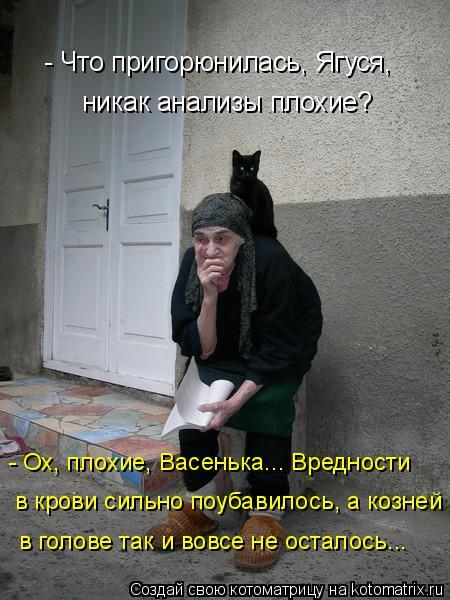 Котоматрица: - Что пригорюнилась, Ягуся, никак анализы плохие? - Ох, плохие, Васенька... Вредности в крови сильно поубавилось, а козней в голове так и вовсе