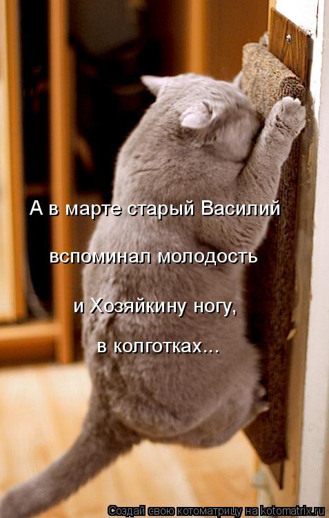 Котоматрица: А в марте старый Василий вспоминал молодость и Хозяйкину ногу,  в колготках...