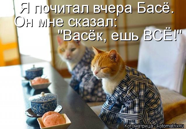 """Котоматрица: Я почитал вчера Басё. Он мне сказал: """"Васёк, ешь ВСЁ!"""""""