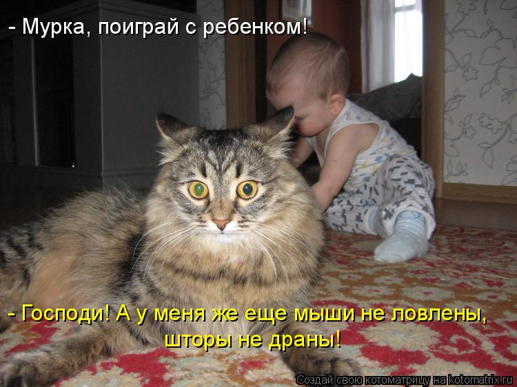 http://kotomatrix.ru/images/lolz/2016/03/22/kotomatritsa_gc.jpg