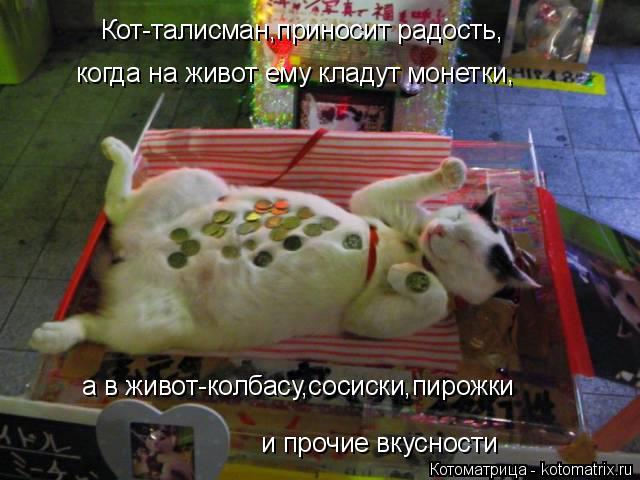 Котоматрица: Кот-талисман,приносит радость, когда на живот ему кладут монетки, а в живот-колбасу,сосиски,пирожки и прочие вкусности