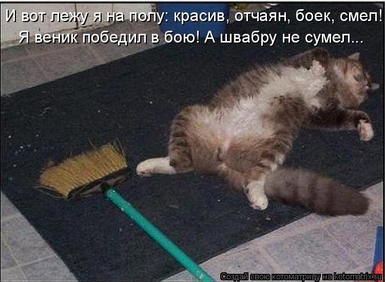 Котоматрица: И вот лежу я на полу: красив, отчаян, боек, смел! Я веник победил в бою! А швабру не сумел...