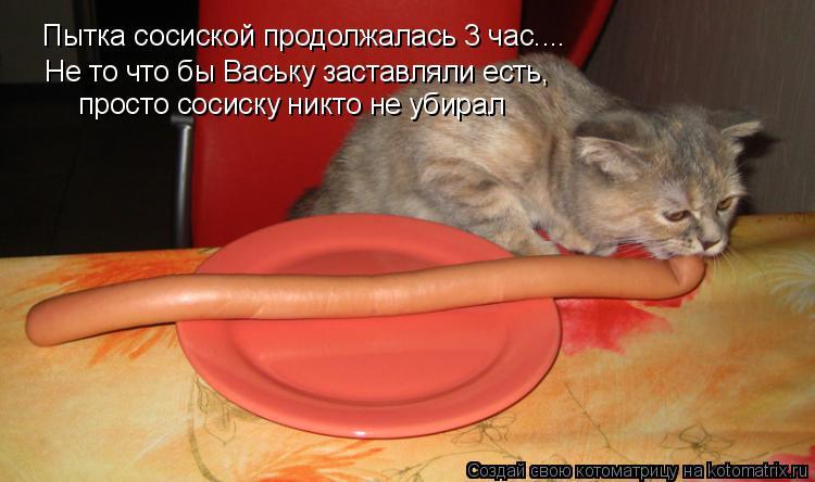 Котоматрица: Пытка сосиской продолжалась 3 час.... Не то что бы Ваську заставляли есть, просто сосиску никто не убирал