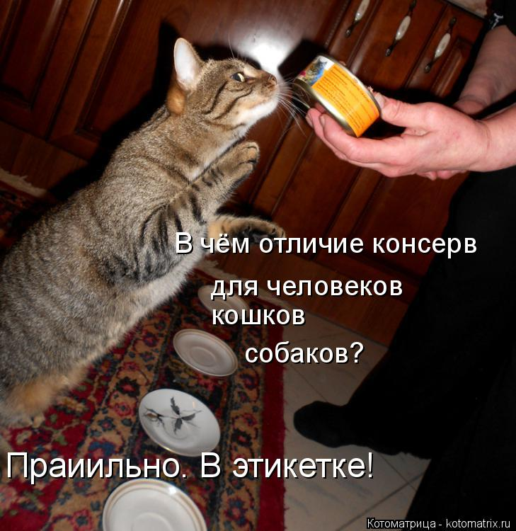 Котоматрица: В чём отличие консерв для человеков кошков собаков? Праиильно. В этикетке!