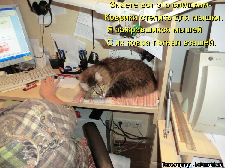 Котоматрица: Я зажравшихся мышей С их ковра погнал взашей. Знаете,вот это слишком- Коврики стелить для мышки.