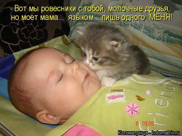 Котоматрица: - Вот мы ровесники с тобой, молочные друзья, но моет мама...  языком... лишь одного  МЕНЯ!