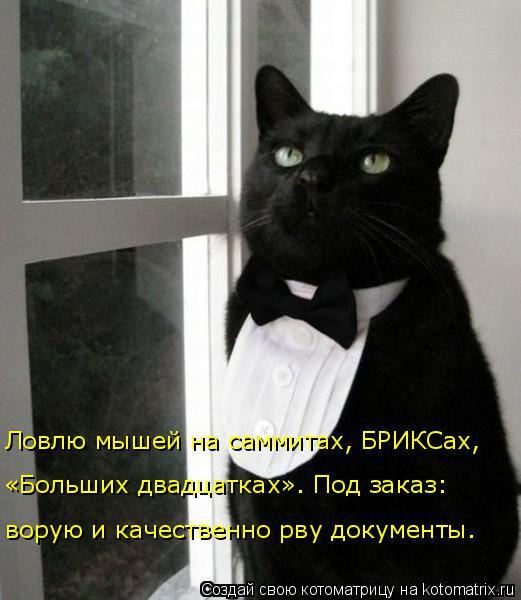 Котоматрица: Ловлю мышей на саммитах, БРИКСах,  «Больших двадцатках». Под заказ: ворую и качественно рву документы.