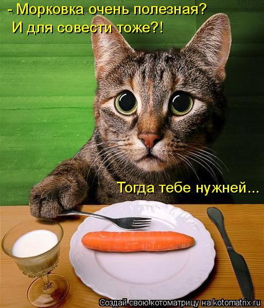 Котоматрица: - Морковка очень полезная?  И для совести тоже?! Тогда тебе нужней...