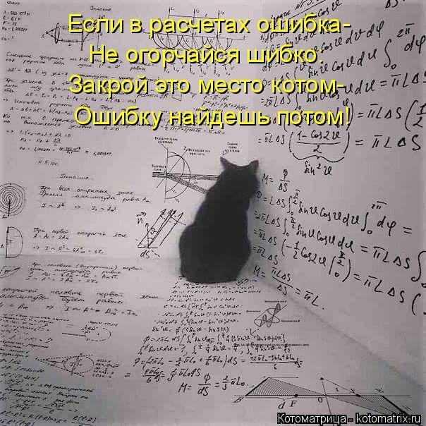 Котоматрица: Если в расчетах ошибка- Не огорчайся шибко: Закрой это место котом- Ошибку найдешь потом!