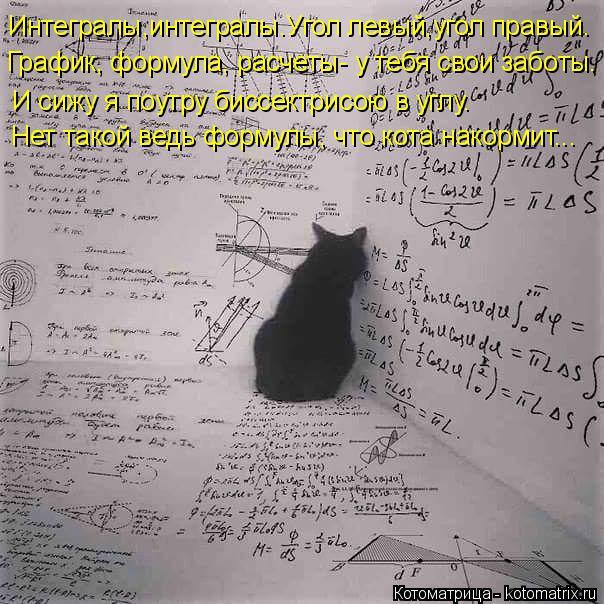 Котоматрица: Интегралы,интегралы.Угол левый,угол правый. График, формула, расчеты- у тебя свои заботы. И сижу я поутру биссектрисою в углу. Нет такой ведь