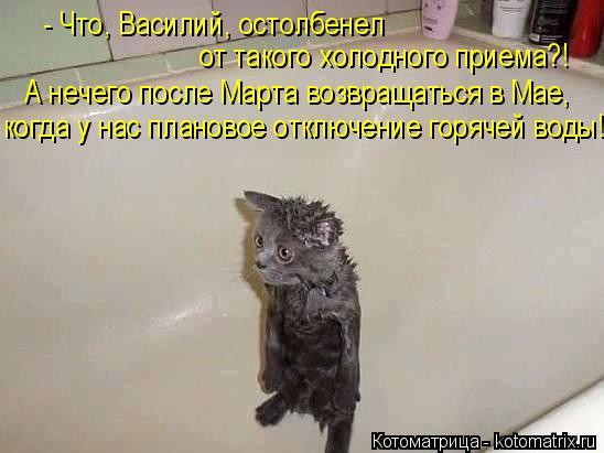 Котоматрица: - Что, Василий, остолбенел  когда у нас плановое отключение горячей воды! от такого холодного приема?! А нечего после Марта возвращаться в Ма